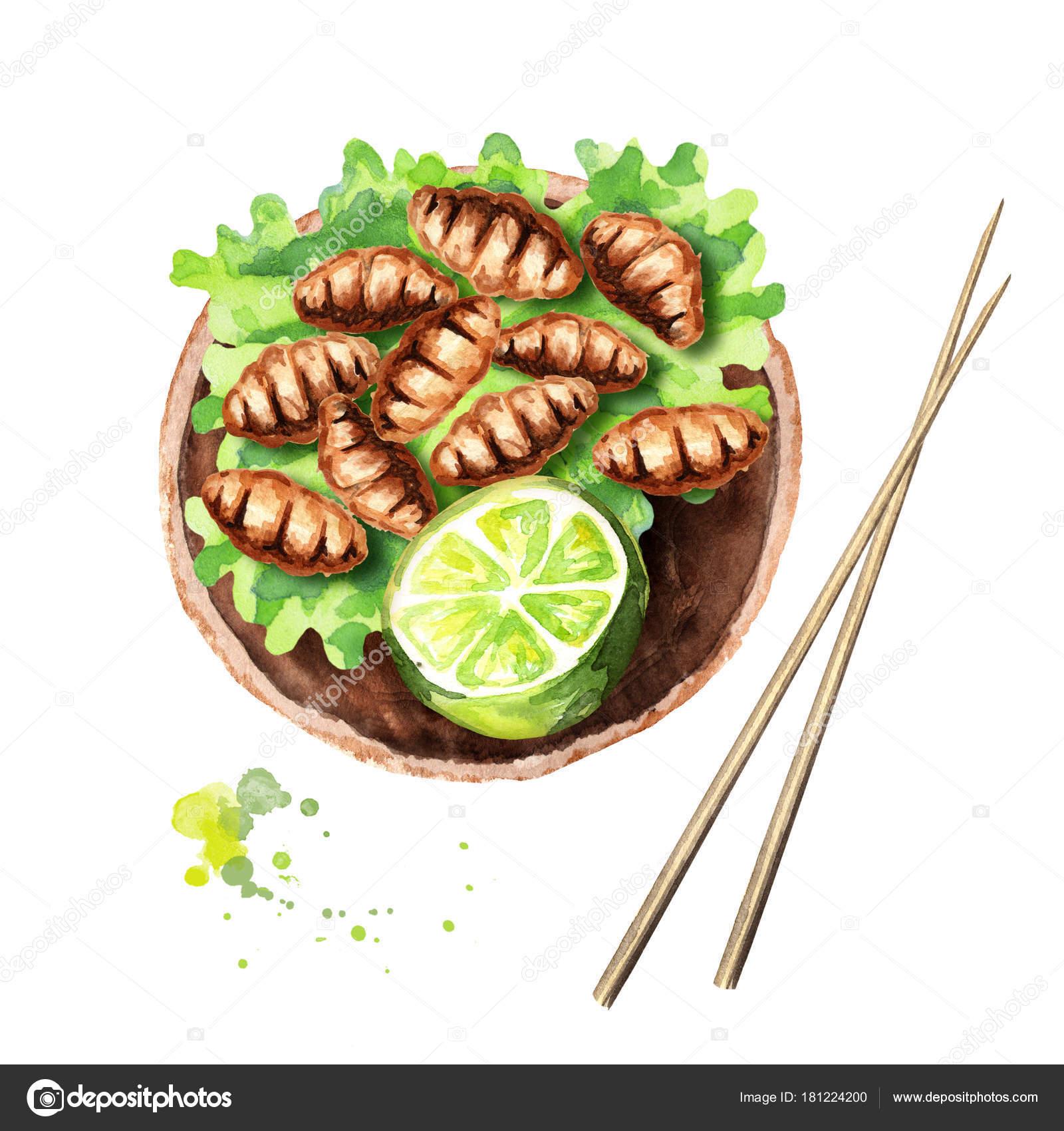 Gebratene Insekten Holz Wurm Mit Kalk Und Salat Asiatische Küche ...