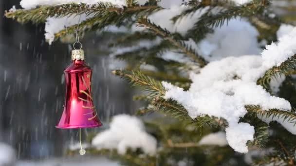 Červená vánoční ornament na smrkové větvičky