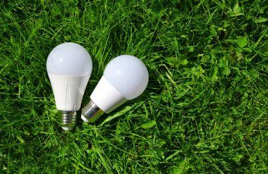 LED bulbs in grass.