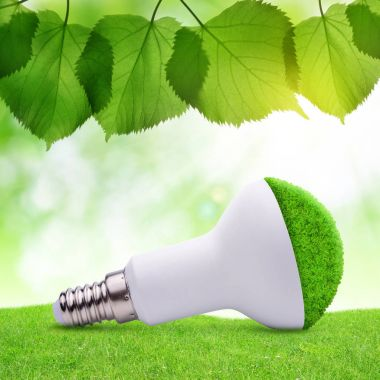 Eco LED bulb in grass.