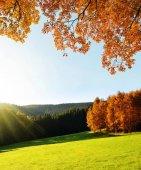 Podzimní krajina v národním parku Šumava