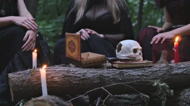 Witch Conjure v lese