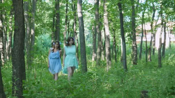 Nymfy jsou Walking prostřednictvím the Woods