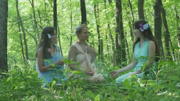 Nymfy jsou komunikace v lese