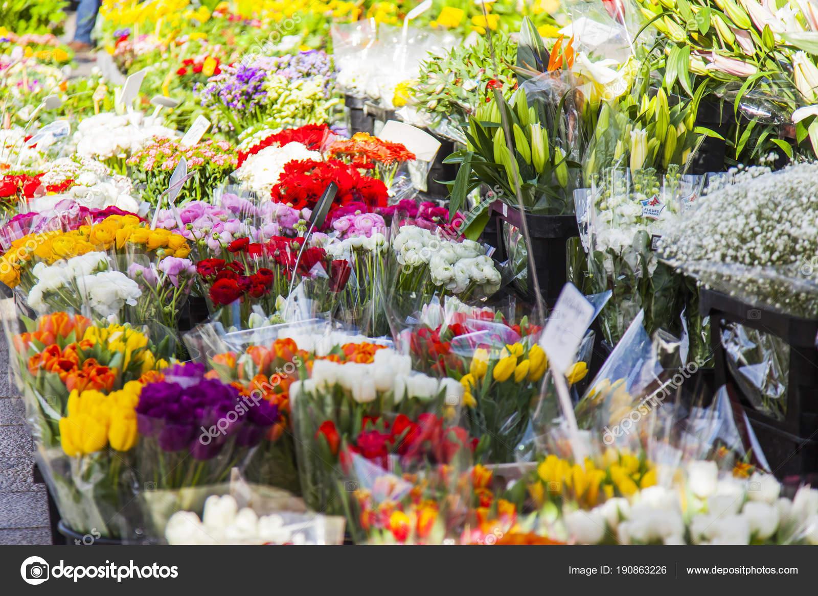 Marseille Frankreich März 2018 Verschiedene Blumen Pflanzen Und