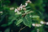 Fotografia coppia di fedi nuziali dorate appeso sul fiore del gambo