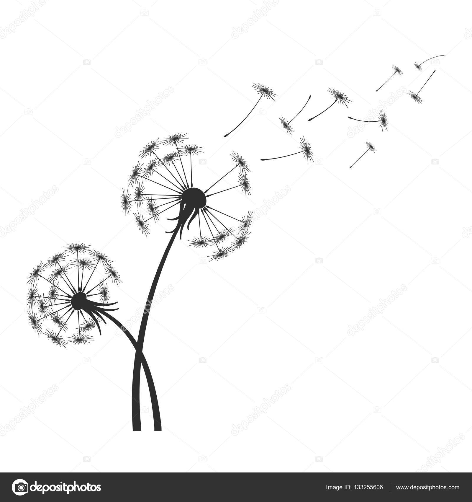 dandelions blowing the wind coloring pages | Black dandelion silhouette with wind blowing flying seeds ...