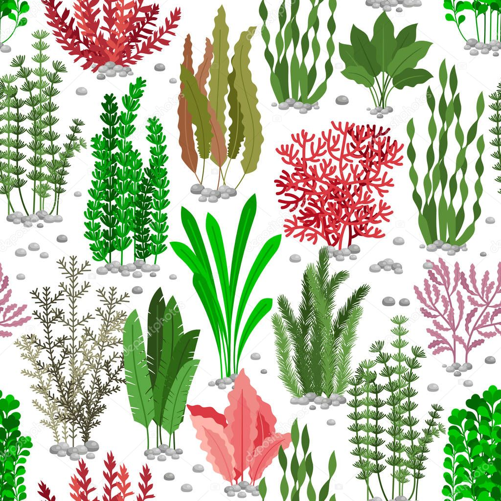 Seaweed seamless pattern. Sea weed fur vector background for marine fashion