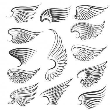 Vector wings isolated on white background. Cartoon tattoo, tribal and vintage heraldic wing set