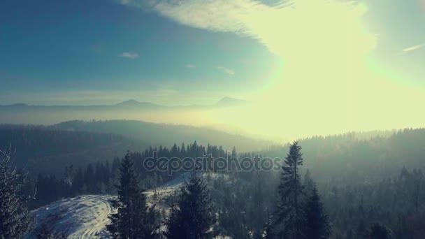 létání nad zimním lese v horách