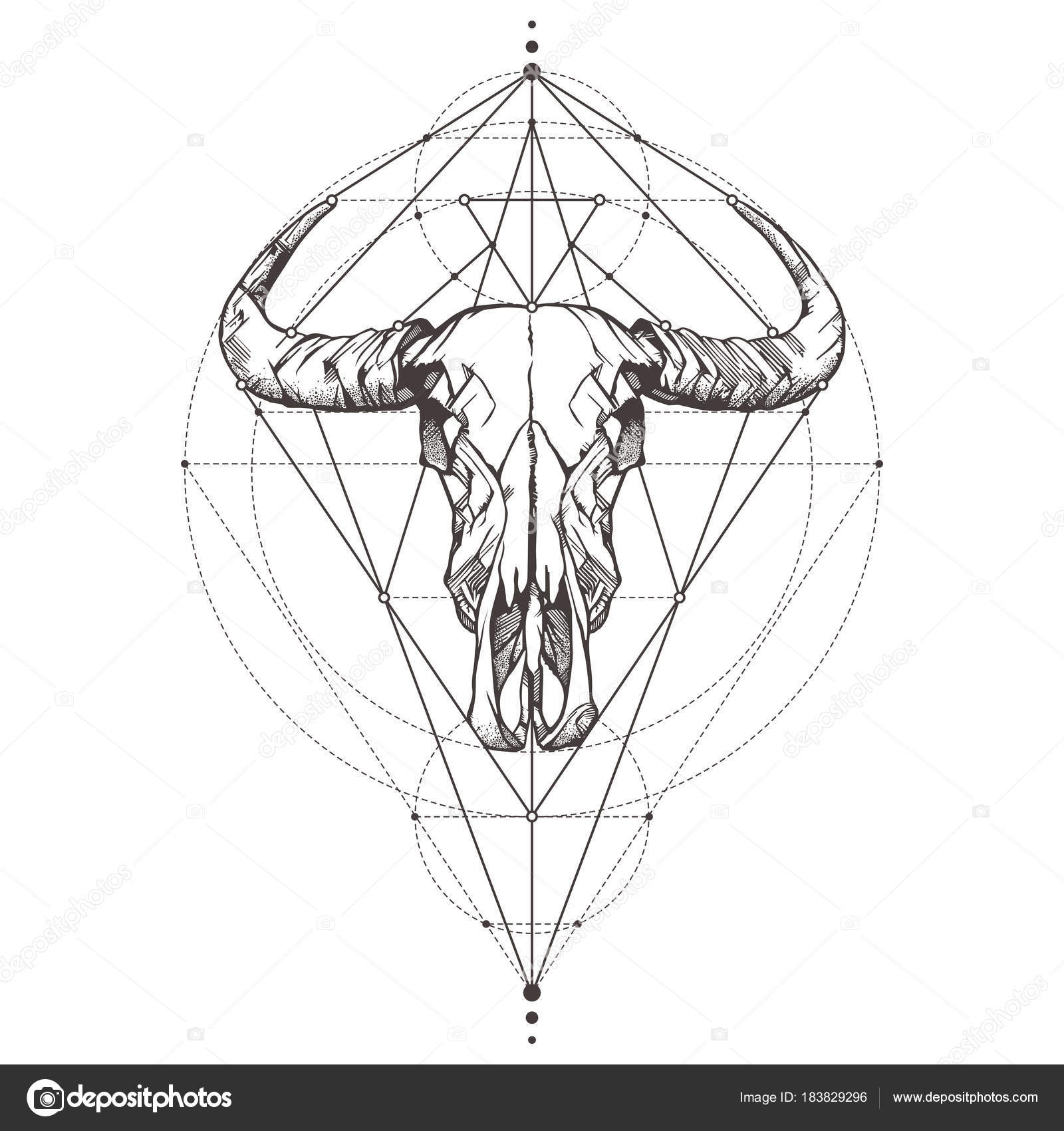 Cráneo de Toro. Bosquejo del tatuaje. Símbolos místicos y animales ...