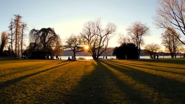 siluety stromů na letecký pohled na západ slunce stín krajina jezera rybniční vody