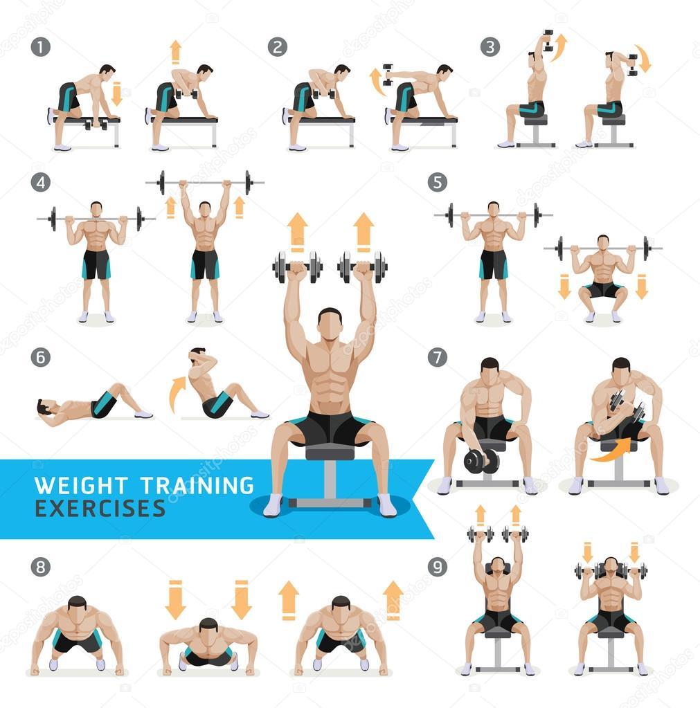 Ejercicios con mancuernas y ejercicios peso entrenamiento — Vector ...