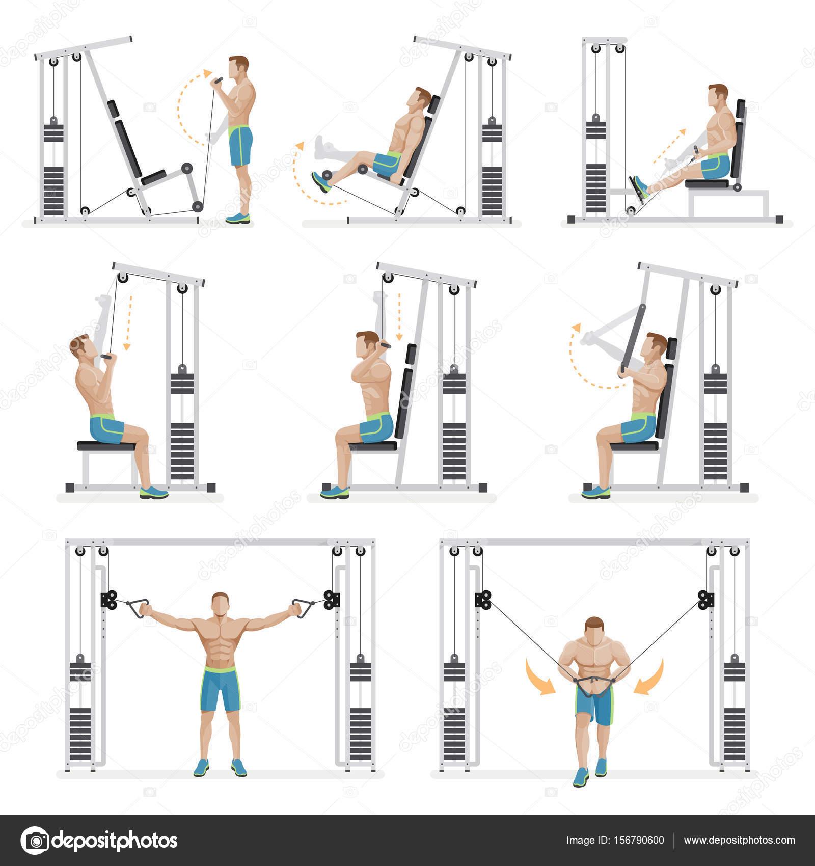 Imágenes: gimnasio ejercicios | Equipo de deportes de