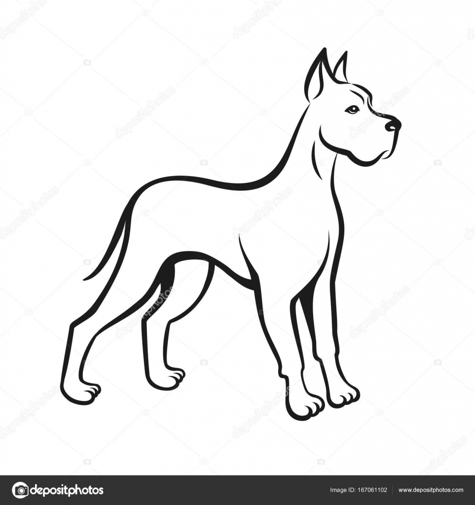 Line Drawing Year : Dog line drawing great dane can be used as pet shop logo