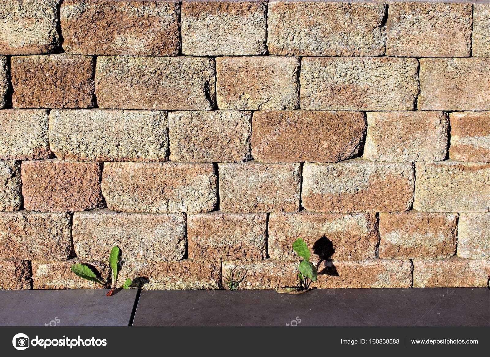 ein bild von einer steinmauer im garten — stockfoto © ulfwittrock