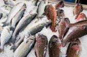 Vari pesci sul mercato, Madeira, Portogallo