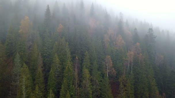 Légi kilátás nyílik a hegyekre, a reggeli köd