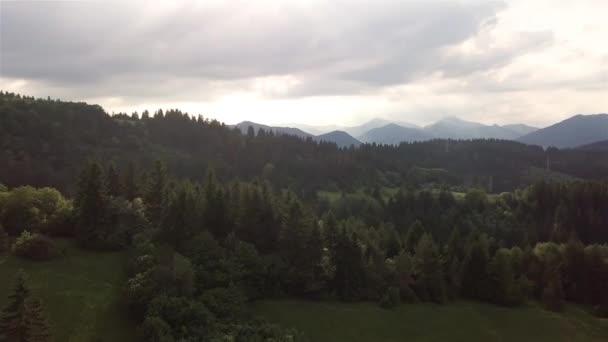 Letecký pohled na zelené stromy ve slovenských Tatrách