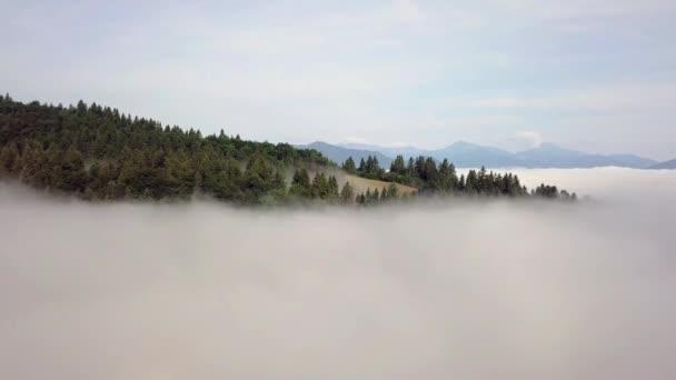 Letecký pohled na kopce s lesy a poli v horách, v bílých mracích ve slovenských Tatrách