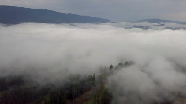 Letecký pohled na jehličnatý les přes mraky v hornaté oblasti Slovenska, Tatry