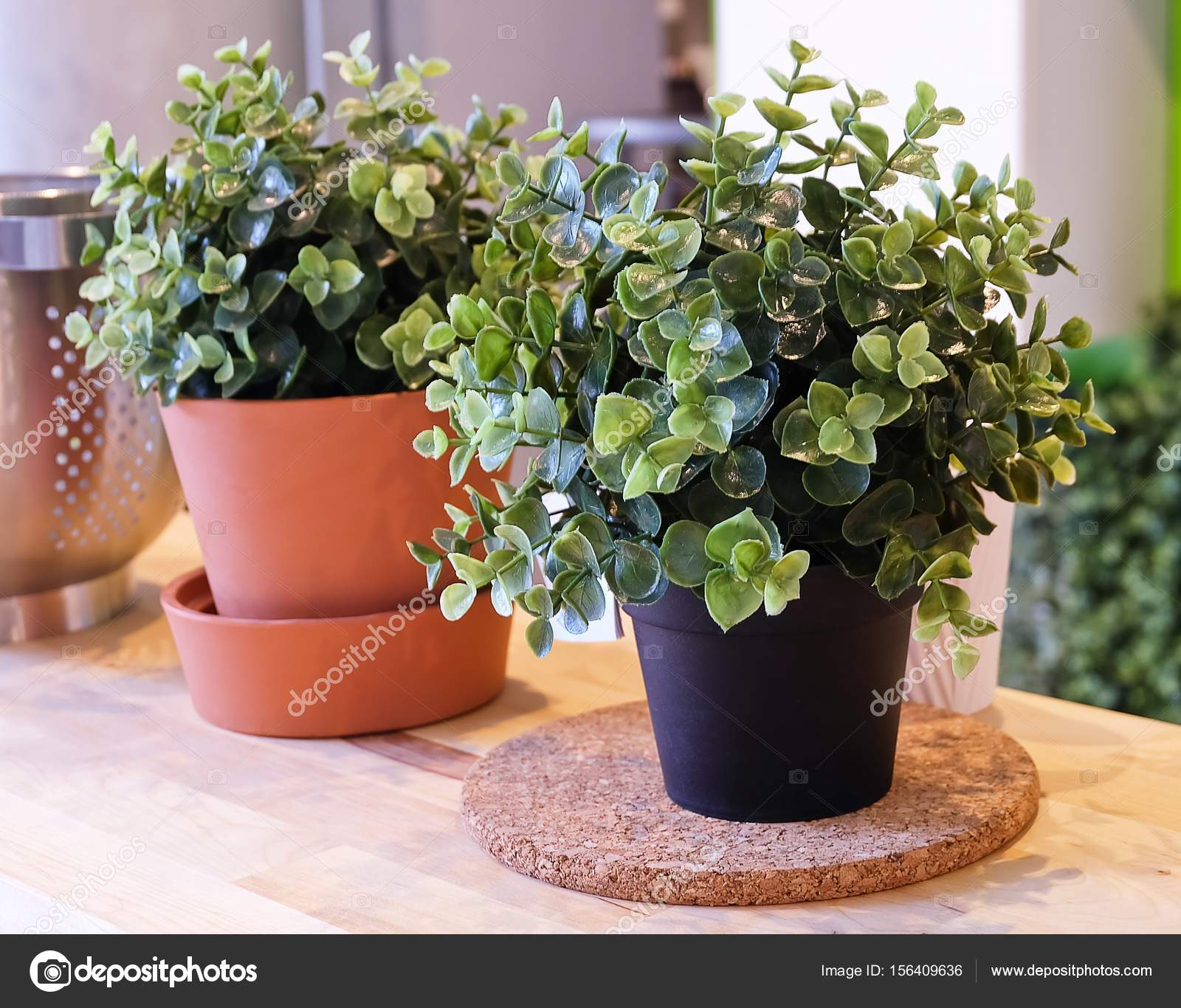 green artificial plants in ceramic pot and plastic pot — stock photo