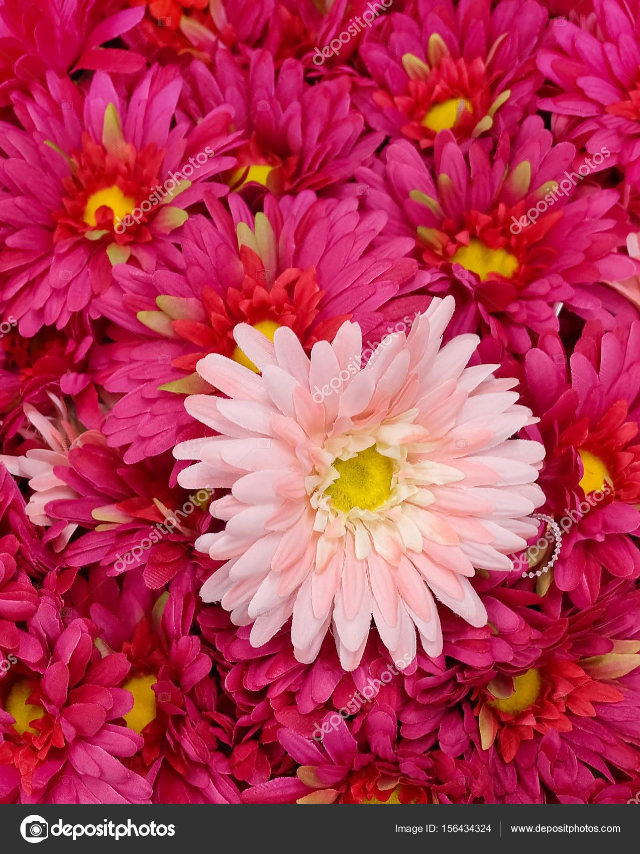 Close Up Of Pink Artificial Daisy Flowers Stock Photo