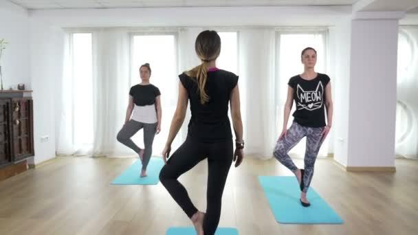 A nők csinál fa asana vezetett jóga sorozat
