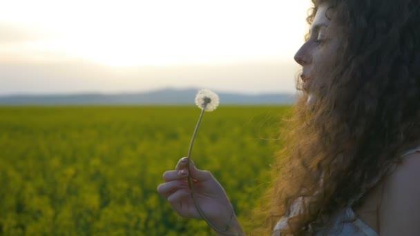Closeup mladé ženy foukání semena pampelišky relaxační v přírodě s zlaté pole na pozadí