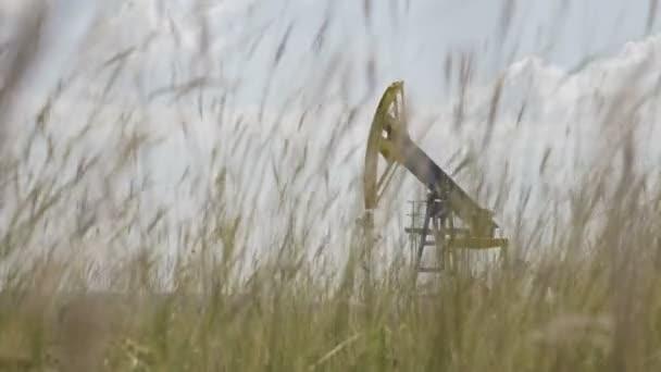 Nahaufnahme eines Weizenfeldes mit einer Pumpeneinheit der Ölindustrie, die im Hintergrund Öl fördert