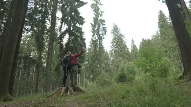 Utazás a gyönyörű aktív pár állva stump fa mosolyogva kamera segítségével korszerű smartphone, mozgatható tett gyalogos selfie