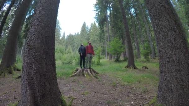 Pár mladí turisté s batohy, sedí na strom stomp užívat krásu a tichu horských scenérií lesa