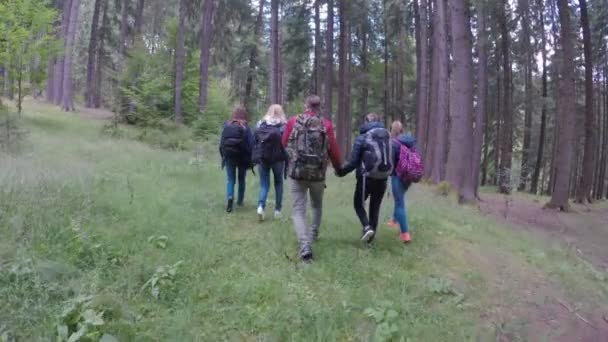 Group of friends wearing backpacks walking on a mountain trail with beautiful forest exploring nature enjoying trip in weekend