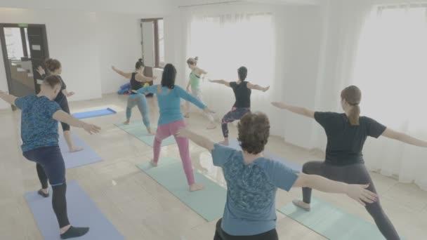 Jóga třídy vyrobené z firemních středního věku ženy cvičení bojovník představují ve fitness studiu jako teambuilding