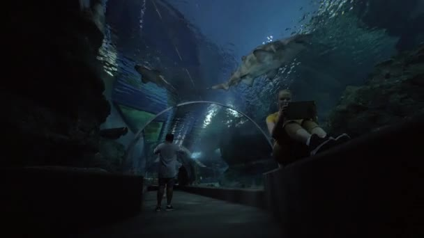 Woman with pad making photos in underwater tunnel of oceanarium