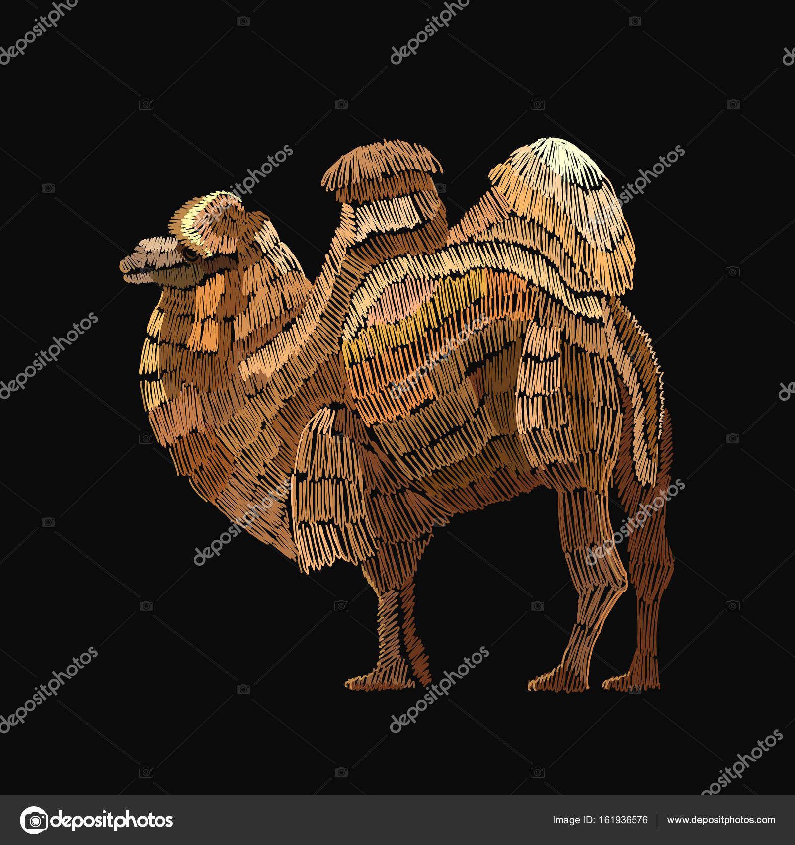 Camello de bordado. Plantilla de Camello arábigo de bordados para ...