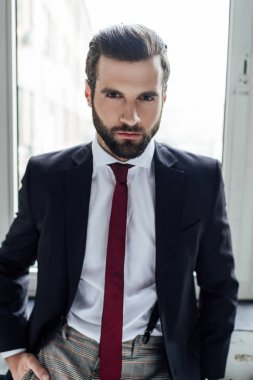 portrait of handsome stylish bearded businessman looking at camera and posing in trendy suit at window