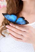 cropped shot of woman with blue butterfly on hand