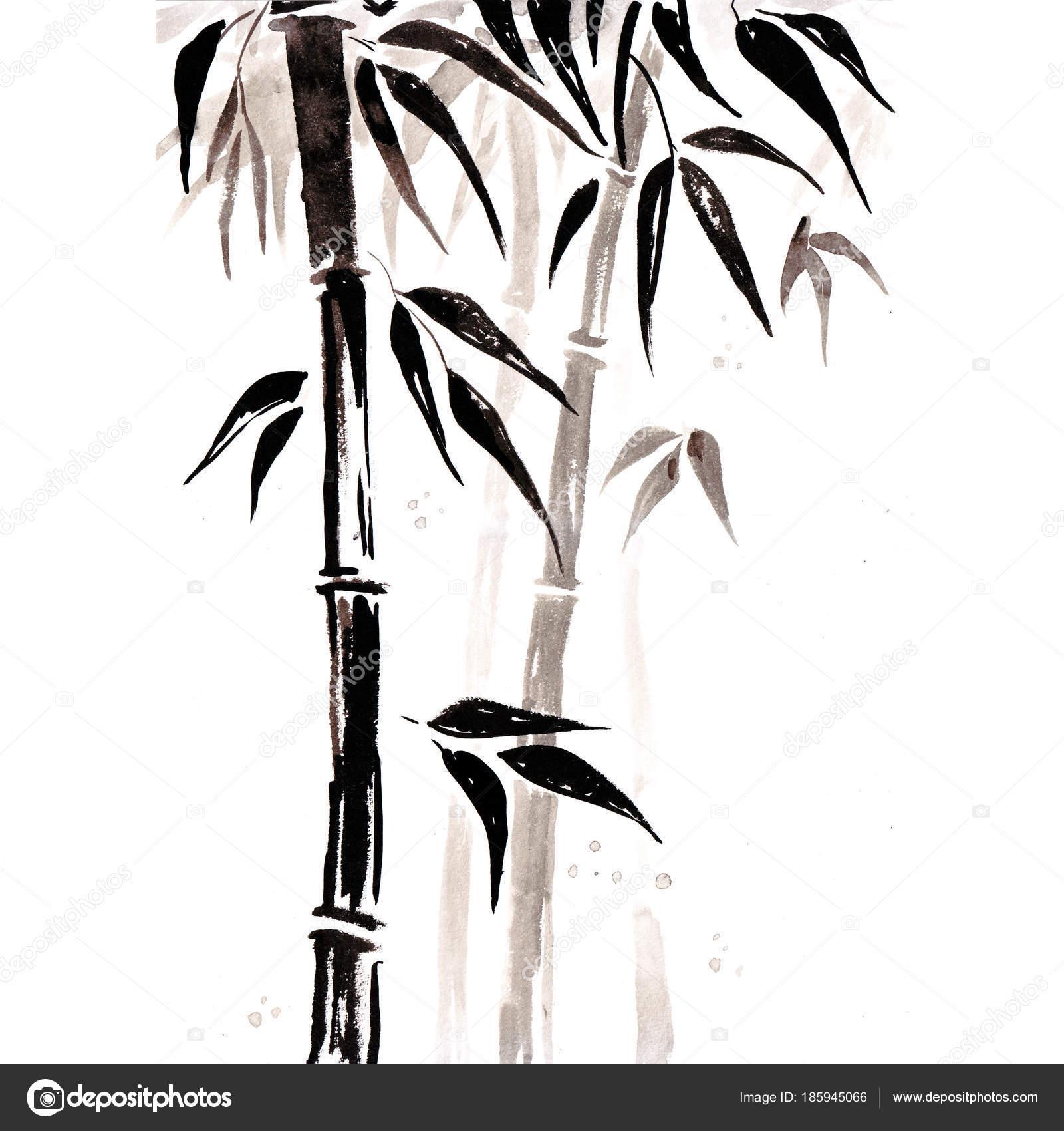 Hervorragend Bambus Im Japanischen Stil. Aquarell Hand Malerei Illustration U2014 Stockfoto