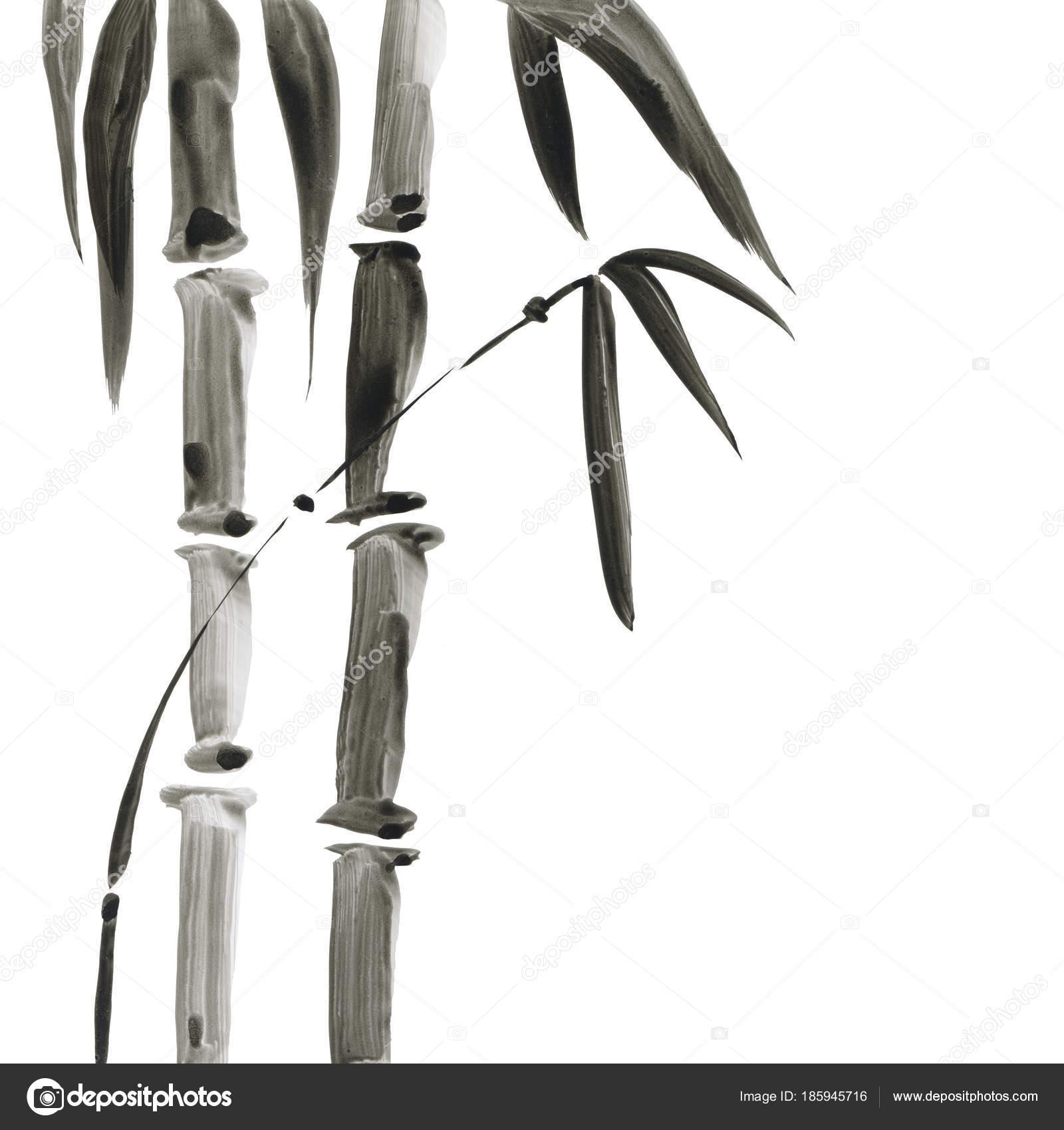 Bambu Japon Tarzı Suluboya El Boyama çizim Stok Foto