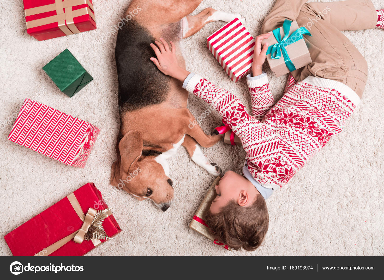 boy with beagle dog and christmas gifts — Stock Photo ...