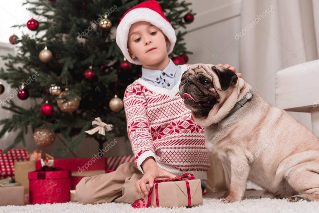 boy with christmas gift and pug