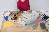 Fotografia Progettista femminile lavorando sulle illustrazioni con pug sveglio sul tavolo di lavoro con computer