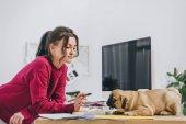 Fotografia Ragazza attraente che gioca con pug mentre si lavora su illustrazioni in ufficio a casa