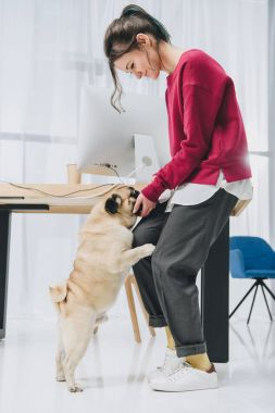 Pretty lady and cute pug dog by working table