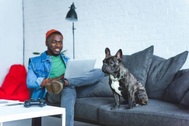 Handsome african american man working on laptop while sitting on sofa with bulldog
