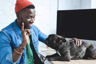 African american man blaming Frenchie dog on table by computer