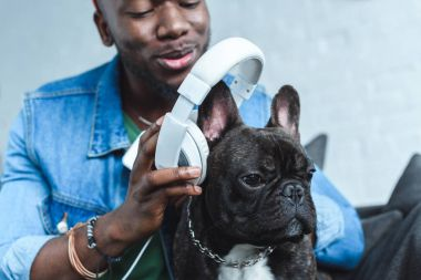 Young man wearing headphones on French bulldog