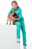 Fotografie smiling veterinarian hugging french bulldog while sitting on white cube isolated on white