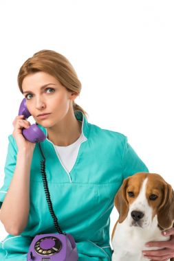 portrait of veterinarian with beagle dog near by talking on telephone isolated on white